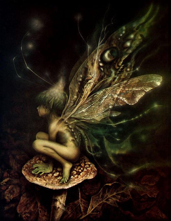 fairy37.jpg